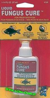داروی قارچ - Fungus Cure