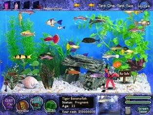 نمایی زیبا از بازی که در آن ماهی هایی نظیر گوپی ، سوارتل ، لوچ دلقک و ... در ظاهر واقعی نمایش داده شده اند