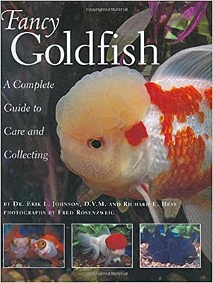 fancy goldfish.jpg
