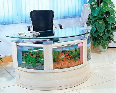 custom-aquariums-fish-tanks-2.jpg