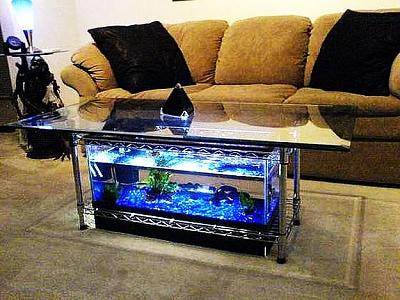custom-aquariums-fish-tanks-6.jpg