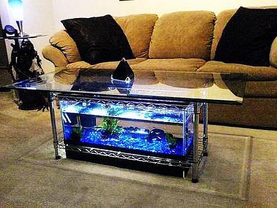custom-aquariums-fish-tanks-6.jpg