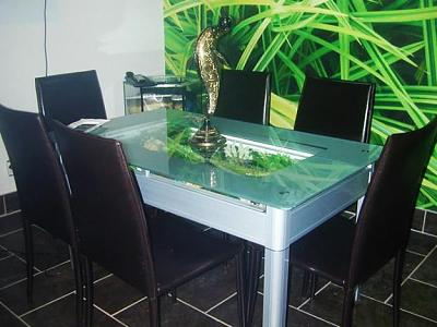 custom-aquariums-fish-tanks-8.jpg