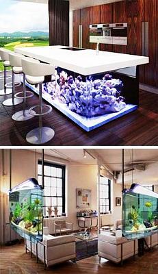 custom-aquariums-fish-tanks-19.jpg