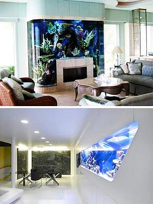 custom-aquariums-fish-tanks-21.jpg