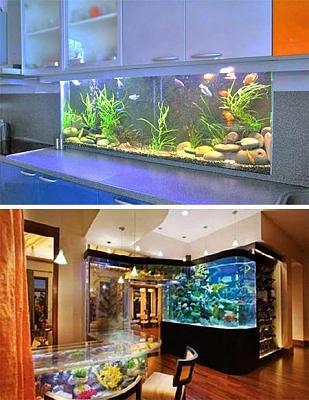 custom-aquariums-fish-tanks-23.jpg