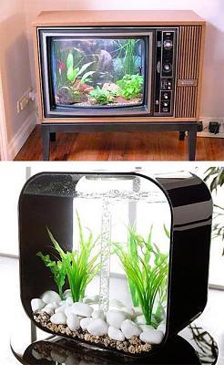 custom-aquariums-fish-tanks-24.jpg