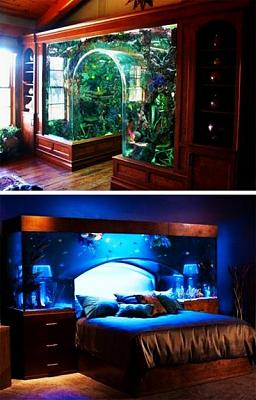 custom-aquariums-fish-tanks-25.jpg