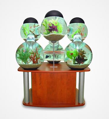 creative-aquariums-16-2.jpg