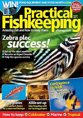 practicalfishkeeping201404.jpg