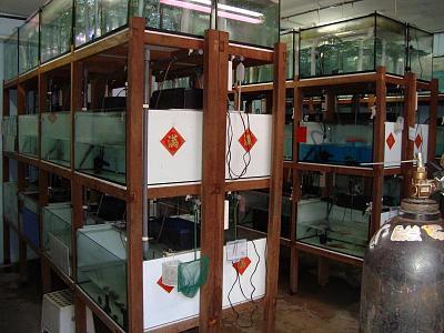 incubation room.jpg