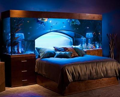 650-gallon-aquarium-bed.jpg