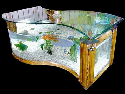 perfect-fish-tanks-pics-your-house-nice-shape.jpg