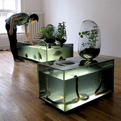 aquarium08.jpg