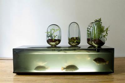 aquarium09.jpg