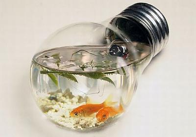 creative_fish_tanks03.jpg