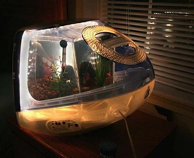 fish-tanks-aquariums-plastic-recycling-macquarium-5.jpg