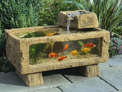 outdoor-aquarium-fish.jpg