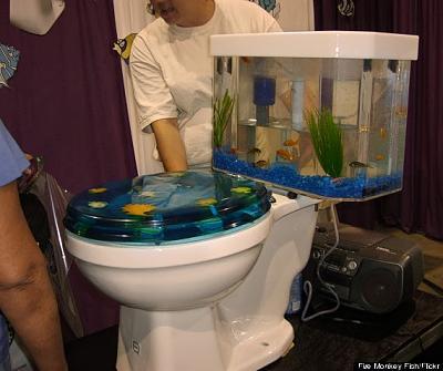 toilet_berbentuk_aquarium.jpg