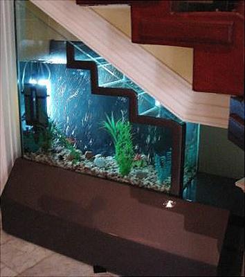 unusual-fish-tanks-91.jpg