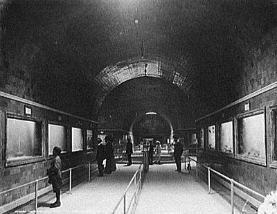 detroit_aquarium_1890-1910.jpg